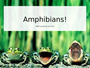 All about Amphibians! Animal Classification