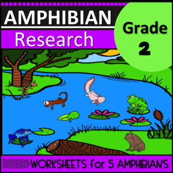 Amphibian Research Second Grade