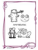 Amphibian Trivia