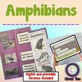 1.10A Amphibians