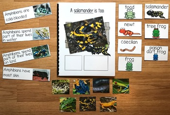 "Amphibians Adapted Book--""A Frog Is An Amphibian"" (w/Real Photos)"