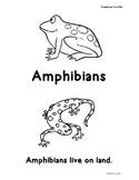 Amphibians Beginning Reader