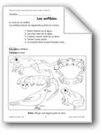 Amphibians/Los anfibios and Frogs/Las ranas