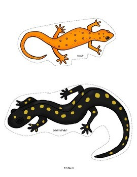 Amphibians Math and Literacy Activities and Centers for Preschool and Pre-K
