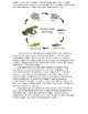 Amphibians Science Passage with Questions and Answers