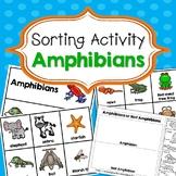 Amphibians Sorting Activities