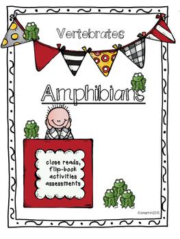 Amphibians / Vertebrates
