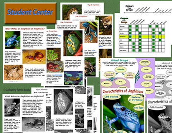 Amphibians – What Makes an Amphibian (Nonfiction Science and Literacy)