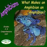 Amphibians – What Makes an Amphibian (Nonfiction Science a