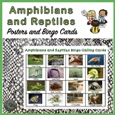 Amphibians and Reptiles Bingo and Posters