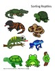 Reptiles and Amphibians; More/Less/Equal, Brown/Green