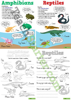 Amphibians and Reptiles Worksheets and Posters Pack