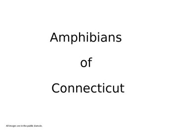 Amphibians of Connecticut - Integrated Science & Math (content)