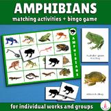 Ampibians Bingo Game and Matching Activities