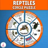 Reptiles Circle Puzzle Activity
