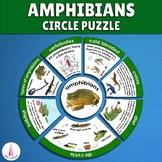 Ampibians Circle Puzzle Activity