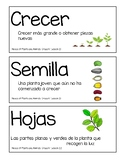 Amplify Kindergarten Unit 1 Vocabulary with Pictures & Chapter Questions-SPANISH