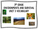 Amplify Science Vocabulary Words Environments and Survival Grade 3
