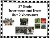 Amplify Science Vocabulary Words Inheritance and Traits Grade 3