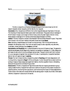 Amur Leopard - endangered review article questions vocabul