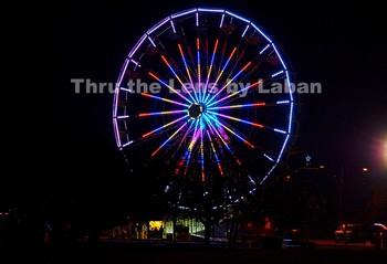 Amusement Park Ferris Wheel Stock Photo #83