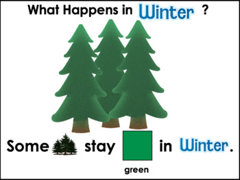 An Interactive Book: What Happens in Winter Time?