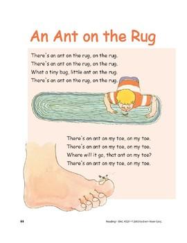 An Ant on the Rug