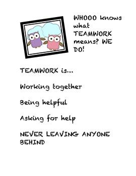 An Assortment of Behavior Management/Character Behavior Posters