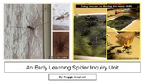 An Early Learning Spider Inquiry (1 Week Plan)