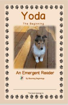 """An Emergent Reader:  """"Yoda...The Beginning"""""""