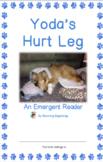 """An Emergent Reader: """"Yoda's Hurt Leg"""""""