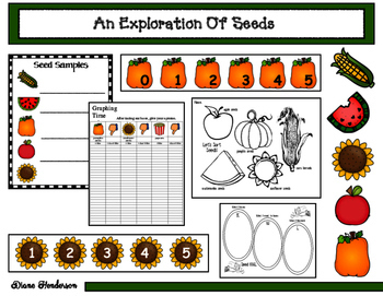 An Exploration Of Seeds