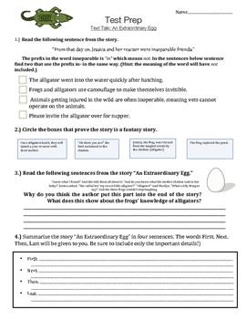 An Extraordinary Egg - Text Talk - Vocabulary - Comprehension - Test Prep