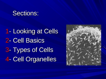 An Introduction to Cell Structure and Function
