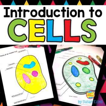 An Introduction to Cells -- Informational Texts, Label a Cell, & Foldables