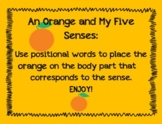 An Orange and My Five Senses