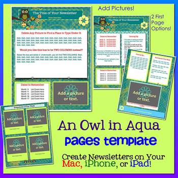 Pages OWLS IN AQUA - Newsletter Template - Create on iPads, iPhones, & Macs