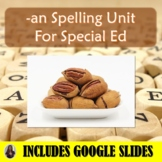 An Spelling Unit for Special Education with Lesson Plans