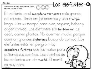 Análisis de texto informativo  de animales del zoológico - Elefantes