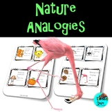 Analogies - Nature Theme Task Cards - Grade 1 -3