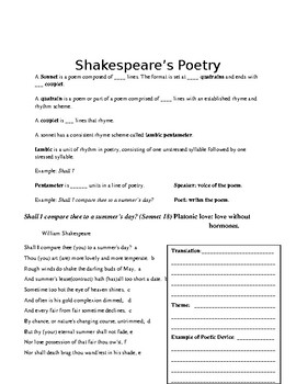 Analysis of Shakespeare's Sonnets