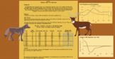 Analyze predator prey data tables and graphs virtual remot