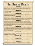 Bill of Rights Scenarios Analysis Worksheet
