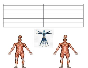 Anatomical Direction Guided Note Sheet