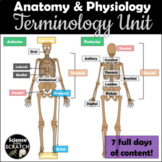Anatomical Directional Terms Scavenger Hunt