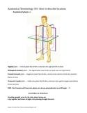 Anatomical Terminology 101