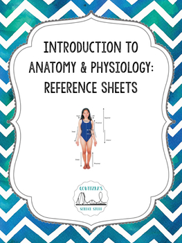Anatomical Terminology Reference Sheets
