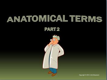 Anatomical Terms part 2 Powerpoint Presentation
