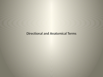 Anatomical and Directional Terms