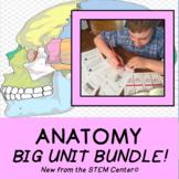 Anatomy BIG Unit Bundle